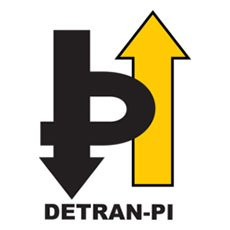 Detran PI CNH Digital